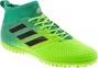 Сороконожки Adidas Ace 17.3 Primemesh TF (BB5972) 5