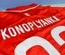 Детская футбольная форма Севилья Коноплянка выезд 2015/16 replica (Севилья выезд JR 15/16 replica) 1