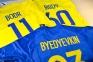 Футболка сборной Украины Евро 2016 stadium дом с нанесением 11