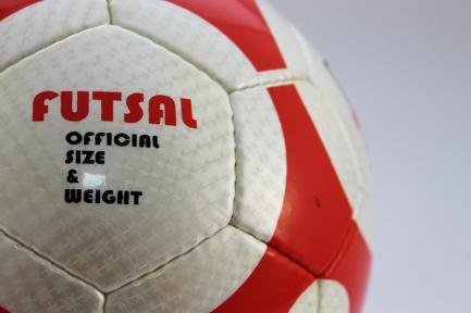Футзальный мяч Mikasa (125)