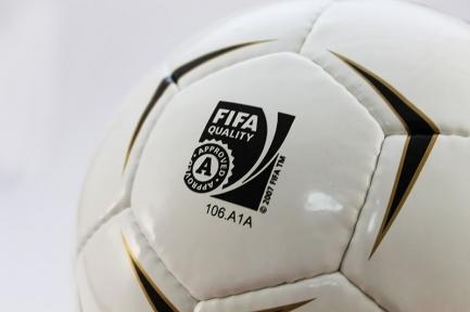 Футбольный мяч Erima FIFA 2007 (112)