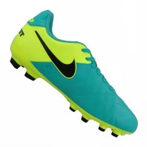 Футбольные детские бутсы Nike JR Tiempo Legend VI FG (819186-307)
