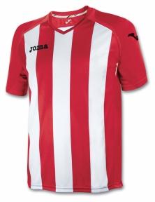 Футболка Joma Pisa 12 (1202.98.021)