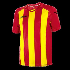 Футболка Joma Pisa 12 (1202.98.022)