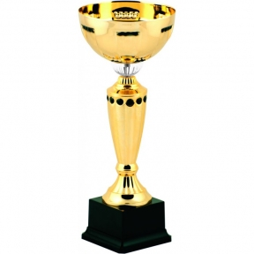 Спортивный Кубок стандарт (8122)