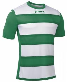 Футболка Joma EUROPA ІІI (100405.450)