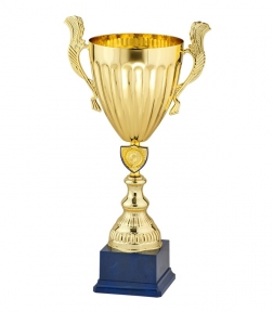 Спортивный Кубок элит 9100