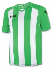 Футболка Joma Pisa 12 (1202.98.016)
