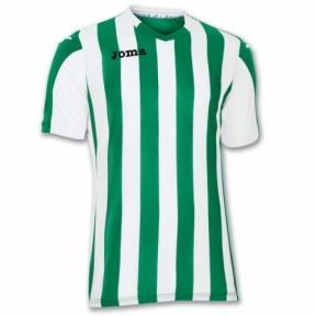 Футболка Joma Copa (100001.450)