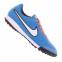 Сороконожки Nike Tiempo Genio TF (631284-418)