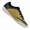 Сороконожки Nike Mercurial X Finale Street TF (725243-706)